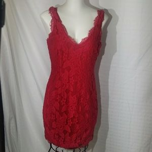 Adrianna Papell Berry coloered lace overlay dress